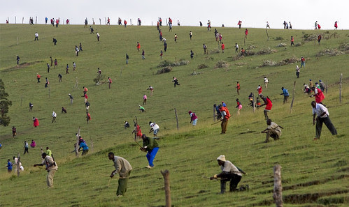 kenyan warriors