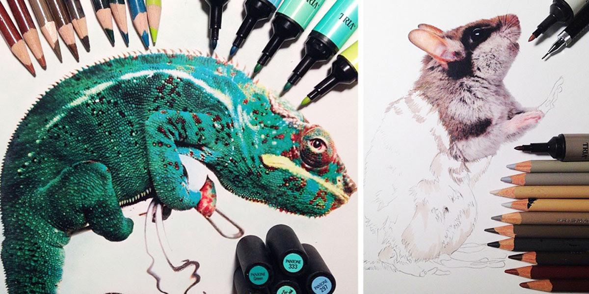 Dibujos De Animales Realistas Rodeados Con Los Materiales Usados