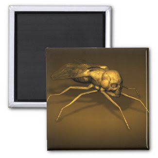 Golden Skull Fly Refrigerator Magnets