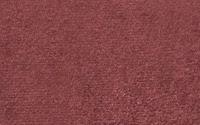 Rhubarb: YP036-10