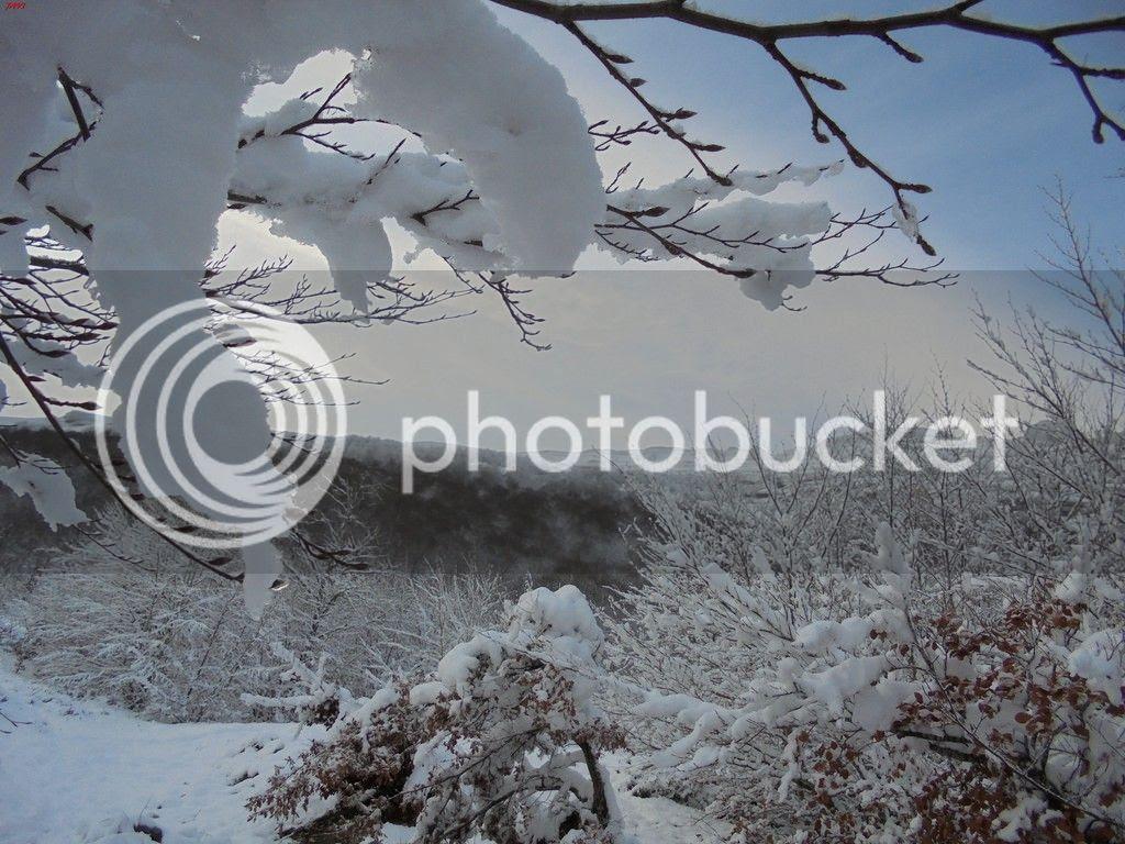 photo SAN DONATO 17-01-16 128_zpsl9ntt6cx.jpg