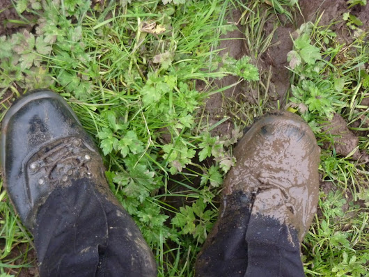 How to Care for Your Walking Boots - Real Self-Sufficiency