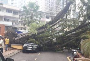 Hujan sebabkan lalu lintas sesak, pokok tumbang di sekitar Lembah Klang