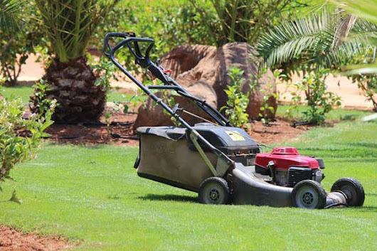 5 Essential Lawn Mowing Tips: Cut Your Garden Grass Like a Pro | Home Gardening Tips