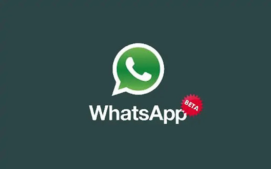 Whatsapp Beta update for Granular Storage Management for Android