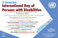 Poster showing keywords relating to the theme of 2015 IDPD