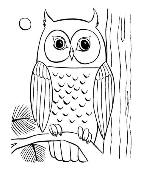 baykus boyama sayfasi okuloencesitr preschool