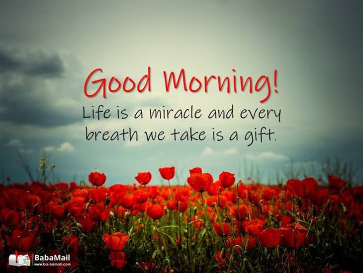A Very Good Morning To You Have A Great Day Ecards Greeting