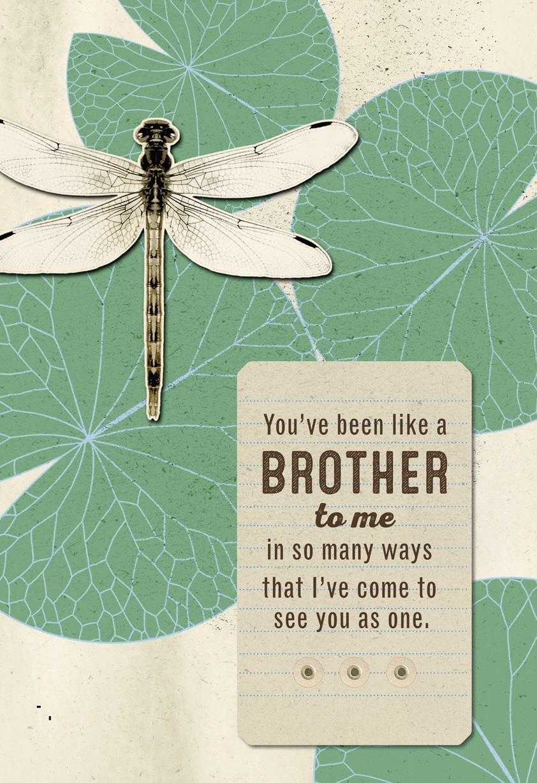 Love You Like A Brother Birthday Card Greeting Cards Hallmark