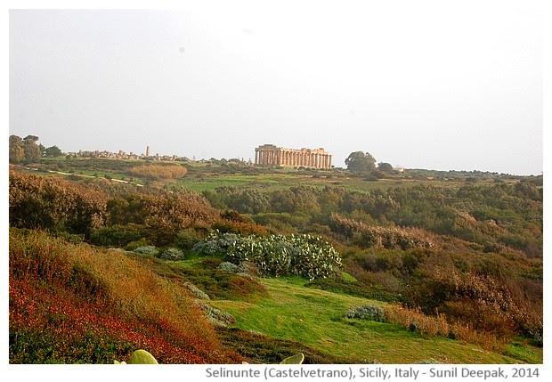 Selinunte, Castelvetrano, Sicily, Italy - images by Sunil Deepak, 2014