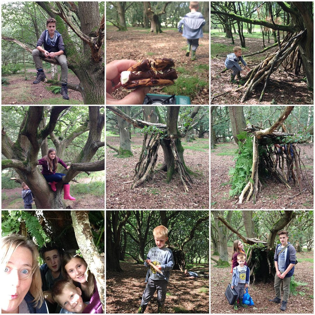 Cooking in the Wild in Cannock Chase #weloveforests