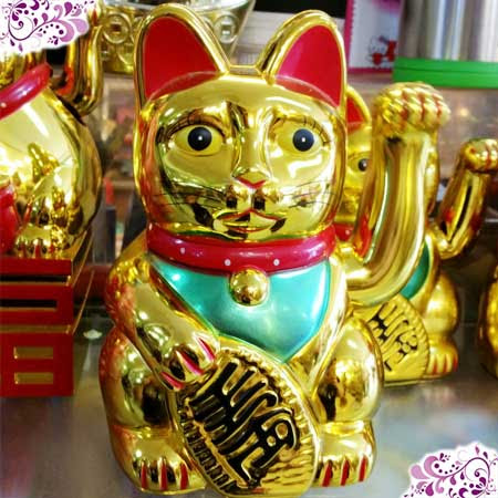 Download 97+  Gambar Kucing Hoki Terlihat Keren