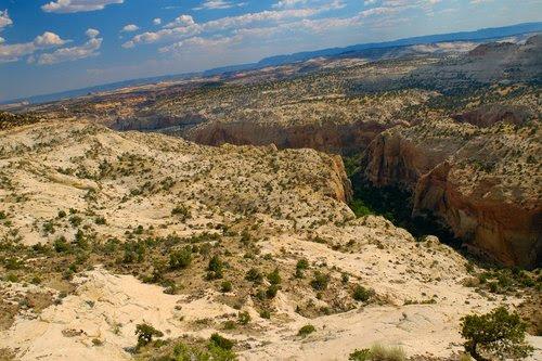 Canyon through Escalante State Park.