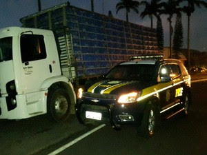 Caminhão com documentação irregular, em Garanhuns (Foto: Divulgação/ PRF)