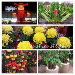 PhotoGrid_1390893826685