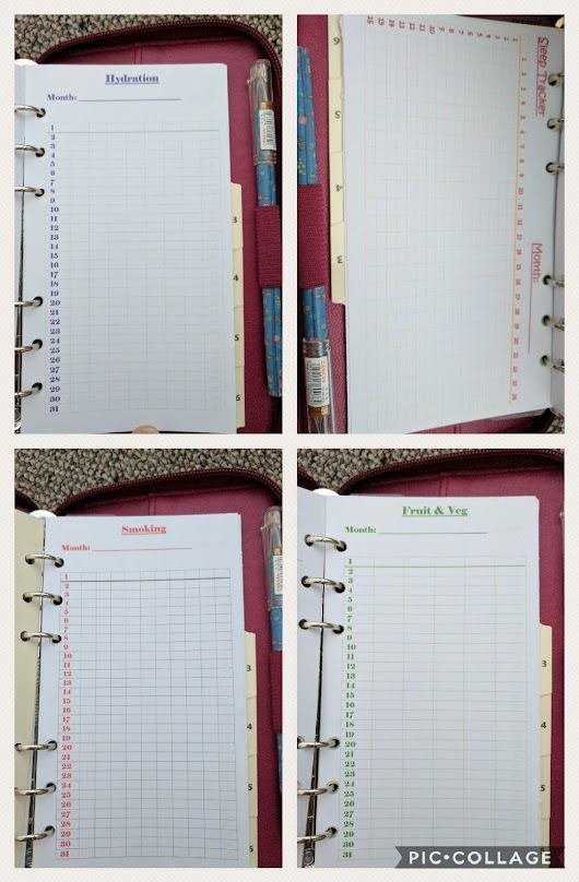 Planner girls collective: why I love/use my planner