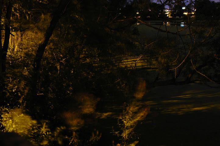 midnight at the lakes 2 web.jpg