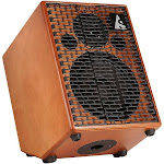 Acoustic Solutions ASG-150 Combo Amp with Wood Finish
