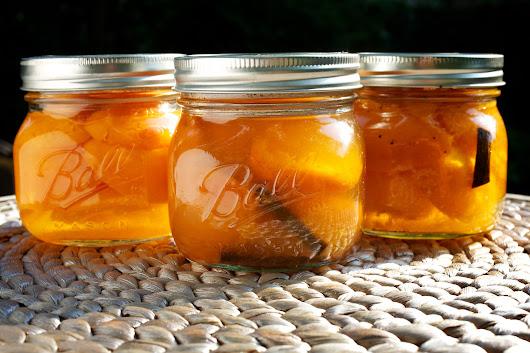 Canning Class: Apricots in Syrup