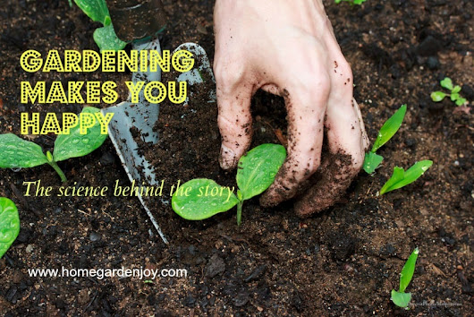 Gardening Makes You Happy and Science Proves It - Home Garden Joy