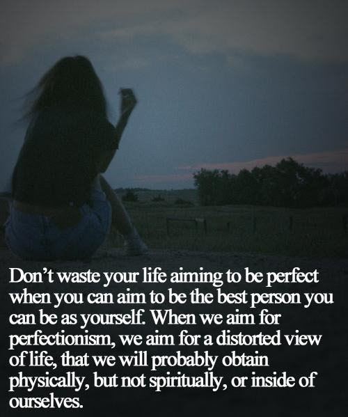 Popular Wisdom Quotes Dont Waste Your Life Aiming To Be Perfect