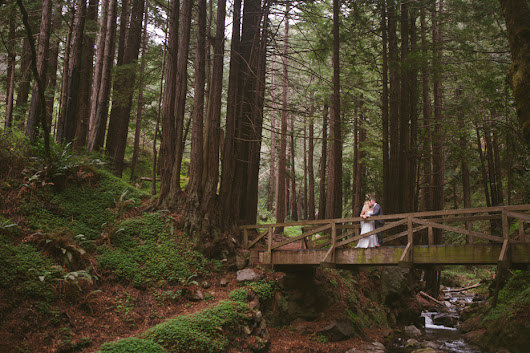 Big Sur Wedding At Limekiln State Park for Kira and Tyler