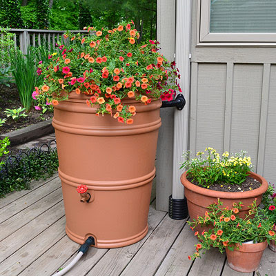 Why You Should Add a Rain Barrel to Your Yard