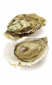 ostras, alimento rico en zinc