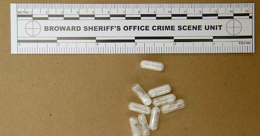 Naked paranoids begging police? That's flakka