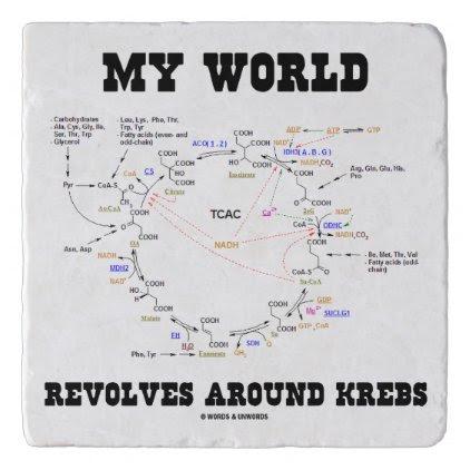 My World Revolves Around Krebs Biochemistry Humor Trivet