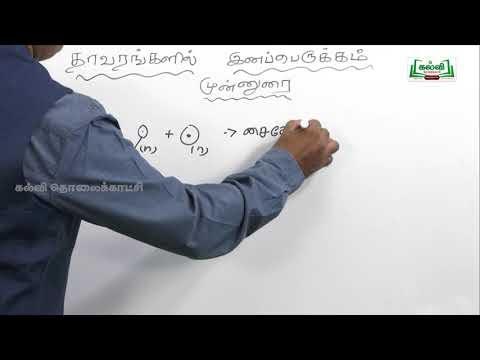 NEET Bio Botany தாவரங்களில் இனப்பெருக்கம் முன்னுரை by Kalvi TV
