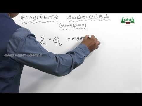 NEET Bio Botany  தாவரவியல் தாவரங்களில் இனப்பெருக்கம் Kalvi TV
