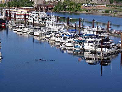 Ducks by the Marina from Wabasha bridge