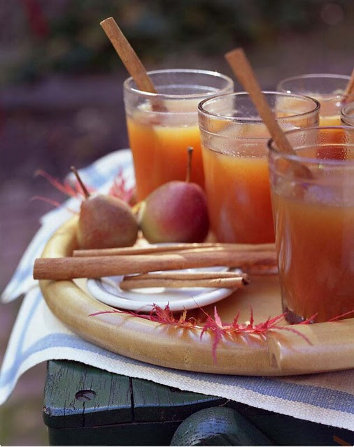 annawilliamsphotography cinnamin drink, beverage, autumn, fall, holidays