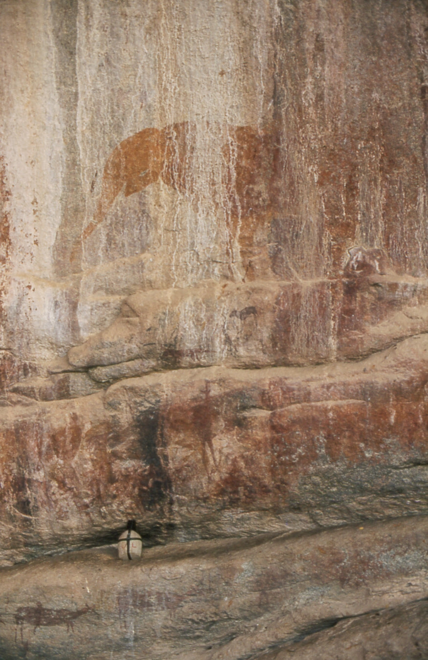 http://upload.wikimedia.org/wikipedia/commons/d/da/San-Elephant_Murewa_ZW.jpg