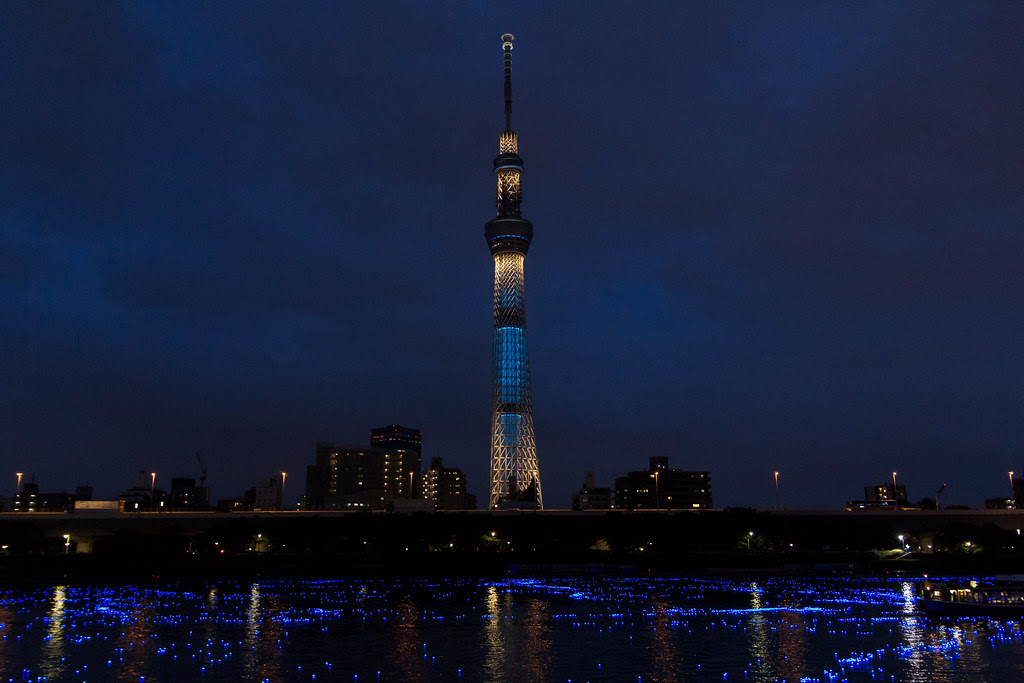 Tokyo-Hotaru (Asakura-Narihira, Tokyo, Japan)