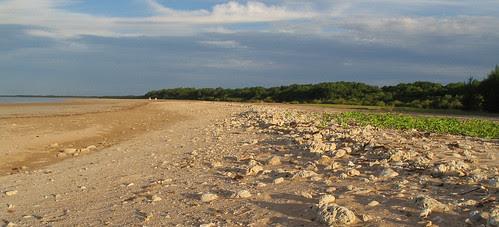 Lee Point beach 04.07
