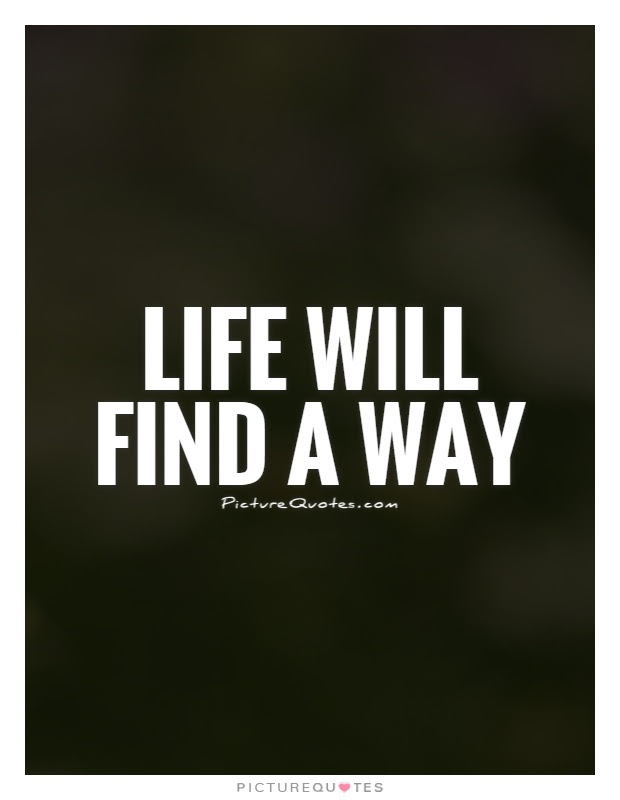 Life Will Find A Way Picture Quotes