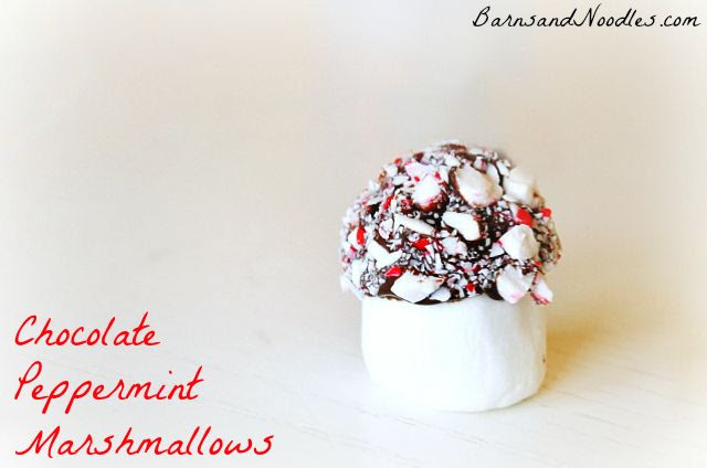 Homemade Chocolate Peppermint Marshmallows