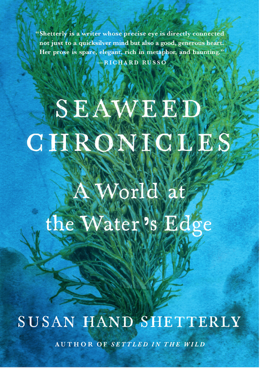 Book Review: Seaweed Chronicles