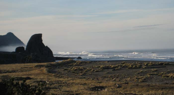 Oregon Coast in January