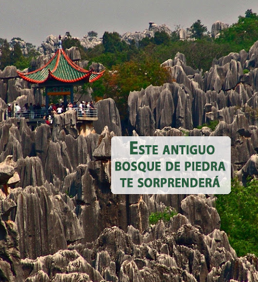 El bosque de piedra de Shilin, China