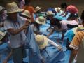 20080816-44夏キャン(山中野営場)連合体はっぴ