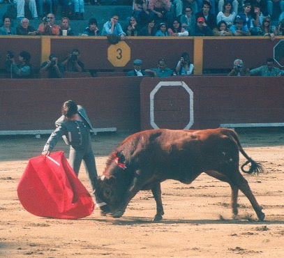 "Andrés Roca Rey ""El Andi"" en Acho"