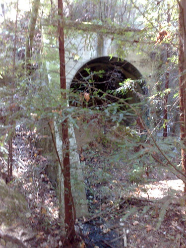 Mountain Charlie tunnel Mountain Charlie Gulch portal