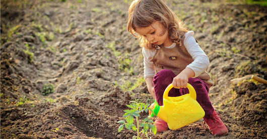 Resources for Parents and Teacher on Gardening with Kids.