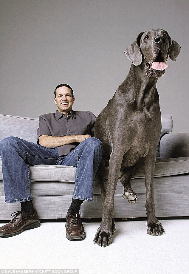 RIP: Giant George the world's largest ever dog sadly passed away on October 17th - here he is sitting with his dad Dave Nasser