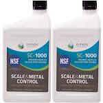 Orenda SC1000 Pool Scale & Metal Control 1qt. ORE-50-102 - 2 Pack