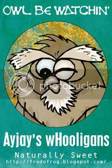 photo OWL-BE-WATCHING-AJ-sm_zps1eb63b88.jpg