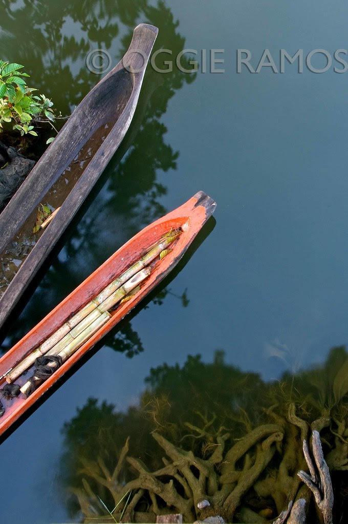 Lake Sebu - Seloton Boats and Roots